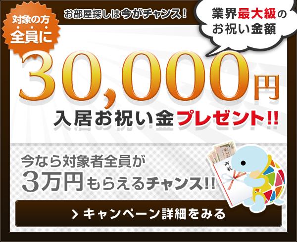 お部屋探しは今がチャンス! 対象の方全員に 30,000円 入居お祝い金プレゼント!(業界最大級のお祝い金額)大好評につき更に期間延長します。キャンペーン詳細を見る